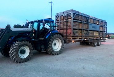 1. MF bale platforma, rulonu platforma Zemaitukas, mustang trailer, tractor trailer,platform for bales11